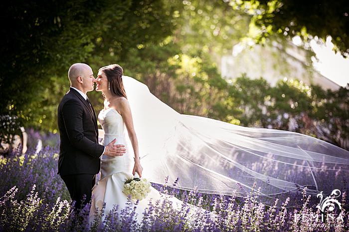 Bedell Cellars Wedding Photos